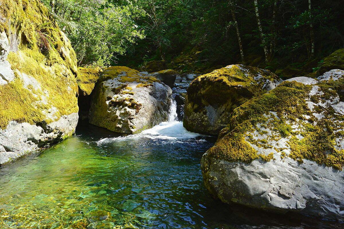 Eugene swimming hole